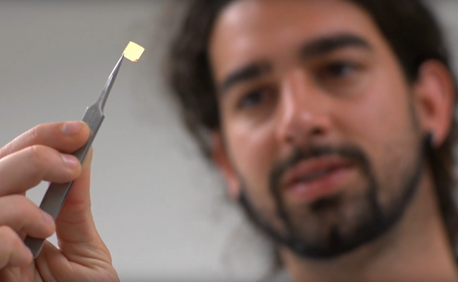 Scientists holding a tracking microchip